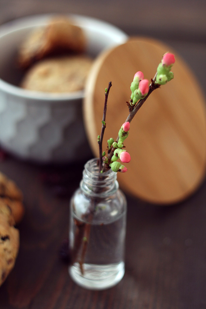 Kekse in Dose