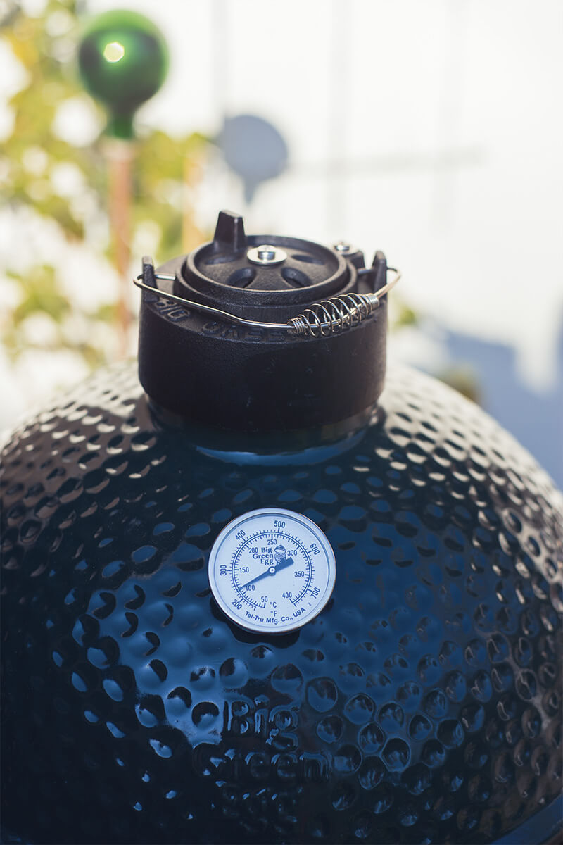 thebiggreenegg-termometer